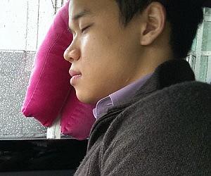 Window Travel Pillow