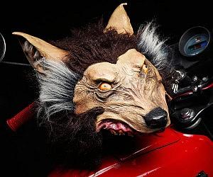Wolf Motorcycle Helmet