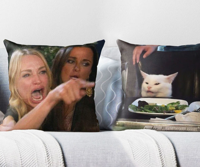 Woman Yelling At Cat Meme Throw Pillows